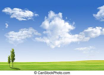 schöne , landschaftsbild, mit, baum, gras, grünes feld, blau, himmelsgewölbe
