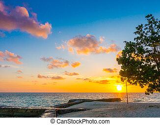 schöne , malediven, insel, aus, himmelsgewölbe, tropische , sonnenuntergang, gelassen, meer