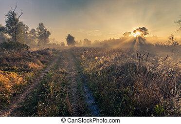 schöne , mystisch, landschaftsbild