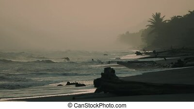 schöne , neblig, sandstrand, costa rica, (72fps, langsam,...