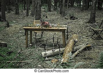 schöne , ort, in, a, bewaldeter bereich, mit, a, picknicken tisch, gelegt, für, a, romantisches abendessen