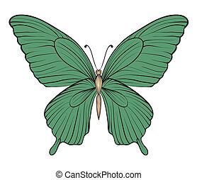 schöne , papillon, weinlese, strokes., linien, freigestellt, hintergrund., hand-drawn, weißes, kontur