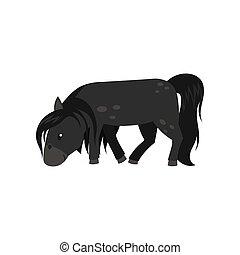 schöne , pferd, pony, abbildung, vektor, schwarzer hintergrund, weißes