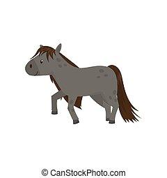 schöne , pferd, pony, grau, abbildung, vektor, hintergrund, weißes