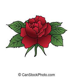 schöne , rose, freigestellt, rotes