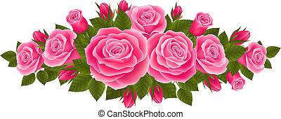 schöne , rosen, umrandungen
