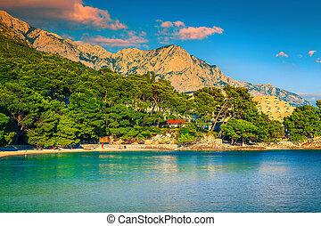 schöne , sandstrand, makarska, riviera, bucht, kroatien, brela, populär, dalmatien