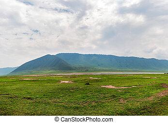 schöne , savanne, tansania, ngorongoro