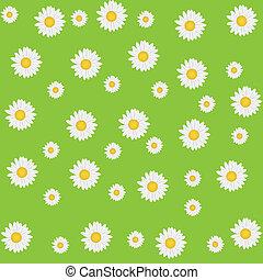 schöne , seamless, gänseblumen, hintergrund