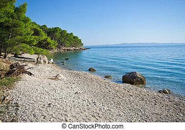 schöne , seeküste, makarska, sandstrand, kroatisch