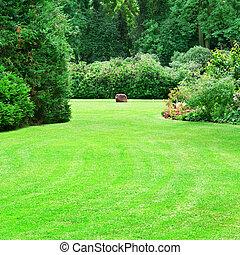 schöne , sommer, kleingarten, mit, groß, grün, rasen