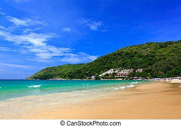 schöne , sommer, sandstrand, phuket, thailand