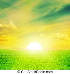 schöne , sonnenuntergang, auf, a, fruehjahr, field.