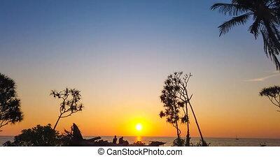 schöne , sonnenuntergang see, mit, palmen