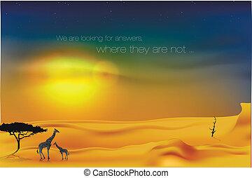 schöne , sonnenuntergang, wüste
