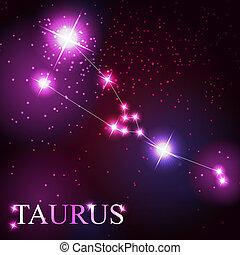 schöne , sternen, himmelsgewölbe, kosmisch, stier, zeichen, hell, vektor, hintergrund, tierkreis