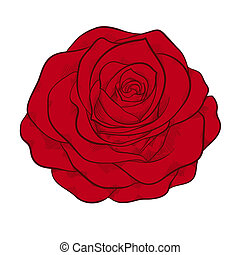 schöne , stil, grafik, rose, freigestellt, rotes