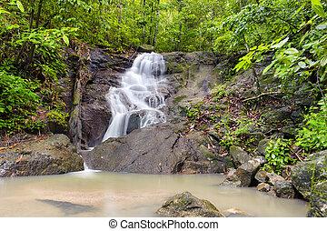 schöne , tropische , natur, regen, jungle., wasserfall, wald, thailand