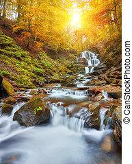 schöne , wasserfall, an, berg, fluß, in, bunte, herbst wald, mit, rotes , und, orangenblatt, an, sunset.