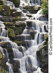 schöne , wasserfall, kaskaden, aus, steinen, in, üppig,...