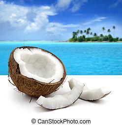 schöne , wasserlandschaft, kokosnuss, weißer hintergrund