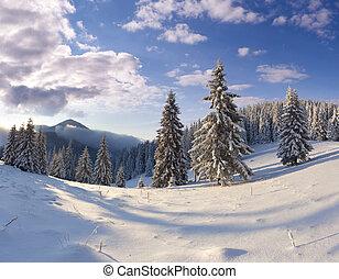 schöne , winter, bäume., schneebedeckte , landschaftsbild