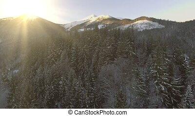 schöne , winter, luftaufnahmen, flug, aus, berg, kette,...