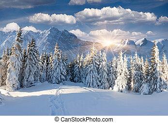 schöne , winterlandschaft, bergen