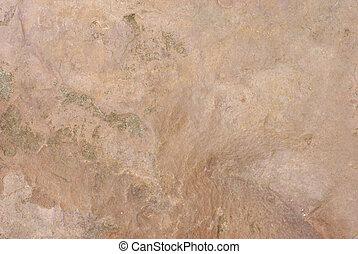 schaaf, steen
