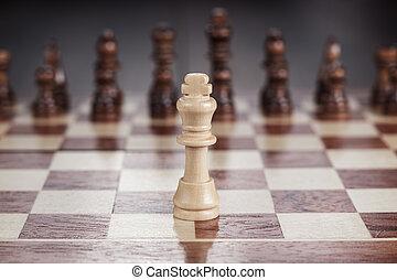 schaakbord, concept, schaakspel, bewindvoering