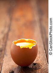 schaal, de dooier van het ei