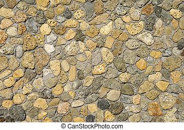 schaal, zee, rotsen