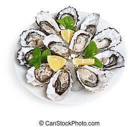 schaaltje, witte , oesters, dozijn