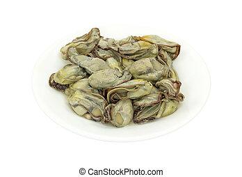 schaaltje, witte , oesters