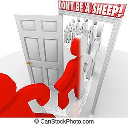 schaap, zijn, maart, niet, naleving, mensen, door deur