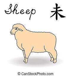 schaap, zodiac, oostelijk, meldingsbord
