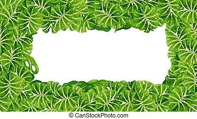 schablone, grüner hintergrund, blätter