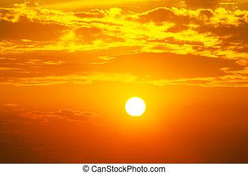 scharlaken, afslaan, en, de, groot, zomer, zon