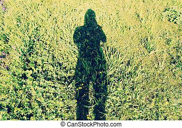 schatten, von, frau, fotograf, aufnahme nehmend, auf, sonnig, wiese