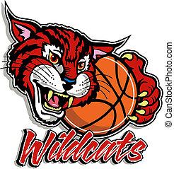 schattig, basketbal, wildcat