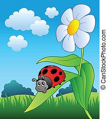 schattig, bloem, lieveheersbeest