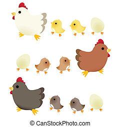 schattig, chicken
