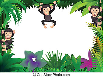 schattig, chimp, jungle