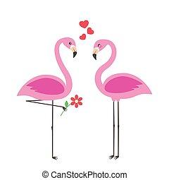 schattig, flamingo's, liefde, twee