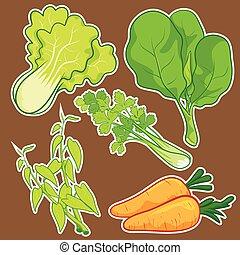 schattig, groente, set