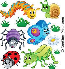 schattig, insecten, verzameling, 1