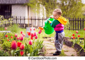 schattig, jongetje, bewaterende bloemen