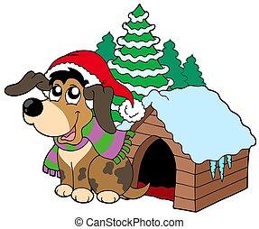 schattig, kerstmis, dog