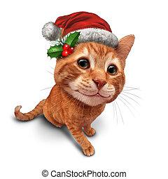 schattig, kerstmis, kat