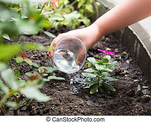 schattig, klein meisje, sproeiing planten, in de tuin